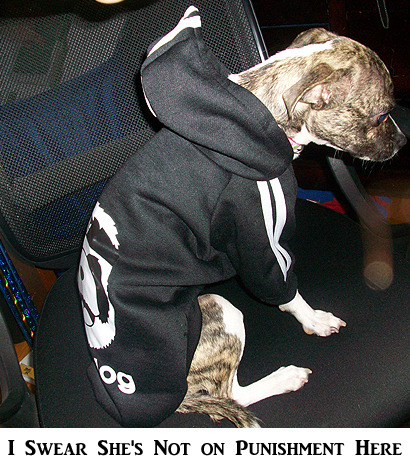 Rosey Sitting Down in her Adidog Hoodie - I Swear She's Not on Punishment
