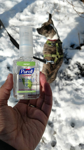 Purell Naturals Advanced Hand Sanitizer for Dog Walkers